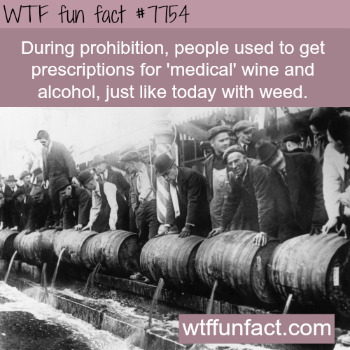 "Text reads, ""During prohibition, people used to get prescriptions for 'medical' wine and alcohol, just like today with weed"""