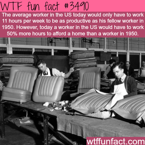 Furniture - WTF fun fact #3490 The average worker in the US today would only have to work 11 hours per week to be as pardoeuctive as his fellow worker in 1950. However, today a worker in the US would have to work 50% more hours to afford a home than a worker in 1950 wtffunfact.com