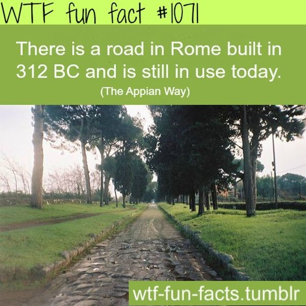 Natural landscape - WTF fun fact # 1071 There is a road in Rome built in 312 BC and is still in use today. (The Appian Way) wtf-fun-facts.tumblr