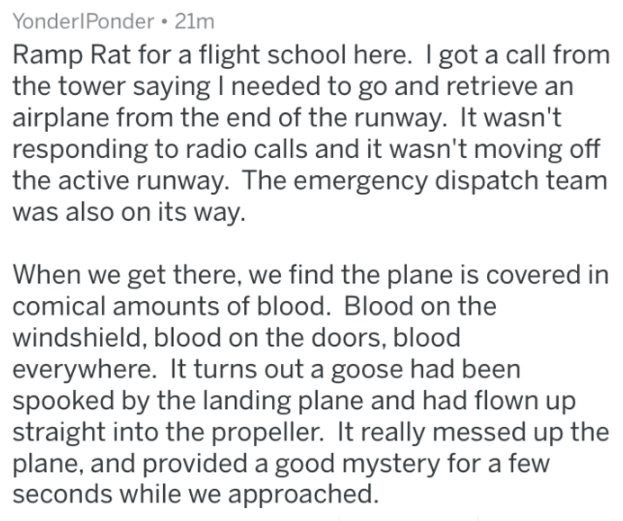 Text - YonderIPonder 21m Ramp Rat for a flight school here. I got a call from the tower saying I needed to go and retrieve an airplane from the end of the runway. It wasn't responding to radio calls and it wasn't moving off the active runway. The emergency dispatch team was also on its way When we get there, we find the plane is covered in comical amounts of blood. Blood on the windshield, blood on the doors, blood everywhere. It turns out a goose had been spooked by the landing plane and had fl