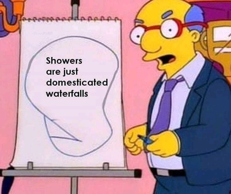 meme - Cartoon - Showers are just domesticated waterfalls