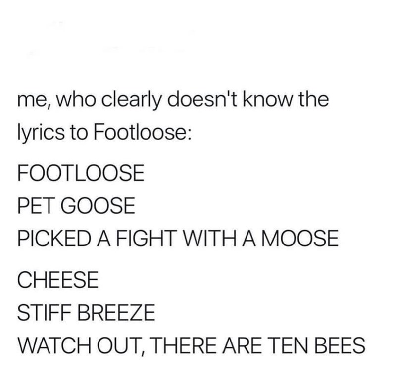 meme - Text - me, who clearly doesn't know the lyrics to Footloose: FOOTLOOSE PET GOOSE PICKED A FIGHT WITH A MOOSE CHEESE STIFF BREEZE WATCH OUT, THERE ARE TEN BEES