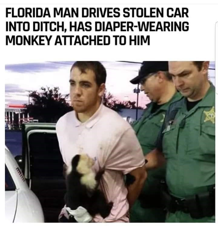 Photo caption - FLORIDA MAN DRIVES STOLEN CAR INTO DITCH, HAS DIAPER-WEARING MONKEY ATTACHED TO HIM