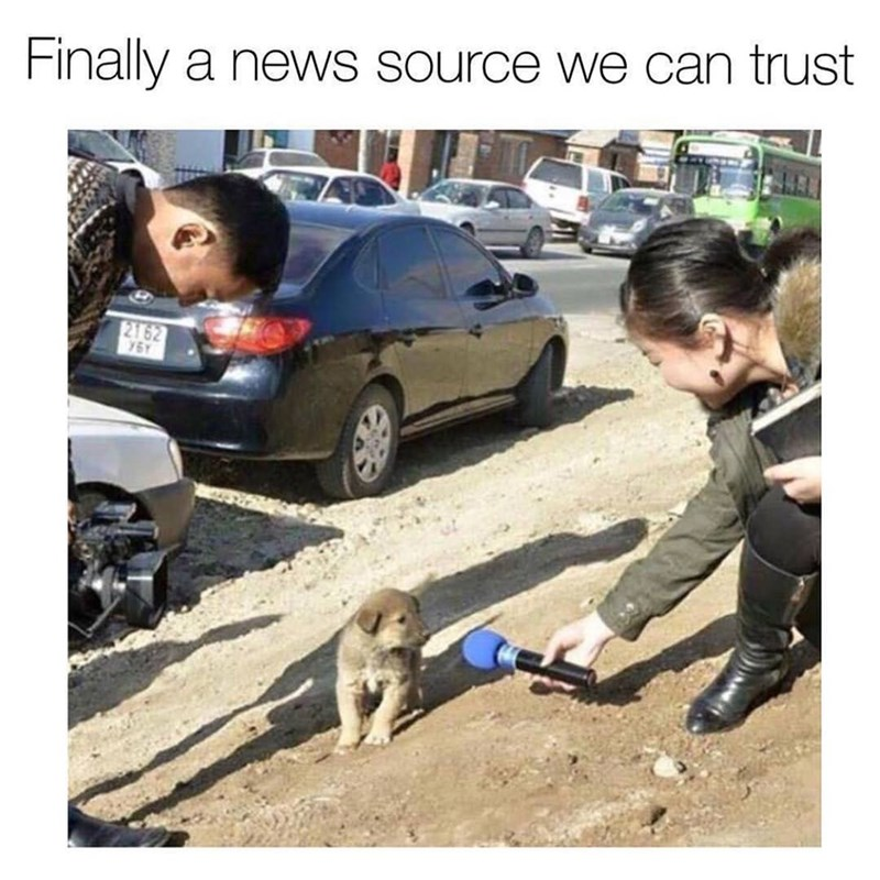 """Caption that reads, """"Finally a news source we can trust"""" above a pic of someone 'interviewing' a cute little puppy"""