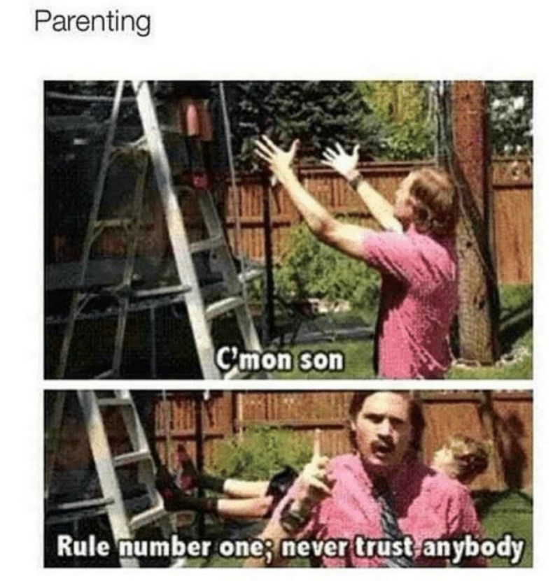 meme about teaching child not to trust anyone with pictures of father telling son to jump into arms then not catching him