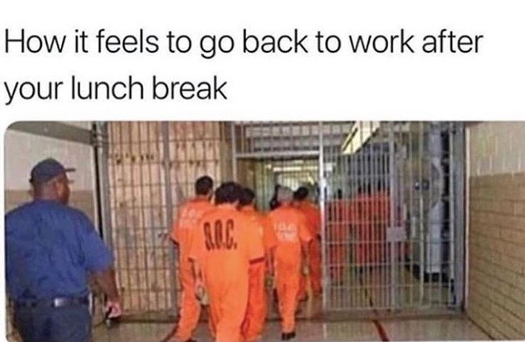 "Caption that reads, ""How it feels to go back to work after your lunch break"" above a pic of prisoners going back into their jail cells"