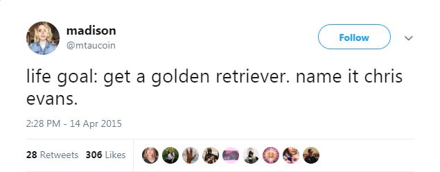 Text - madison Follow @mtaucoin life goal: get a golden retriever. name it chris evans. 2:28 PM - 14 Apr 2015 28 Retweets 306 Likes