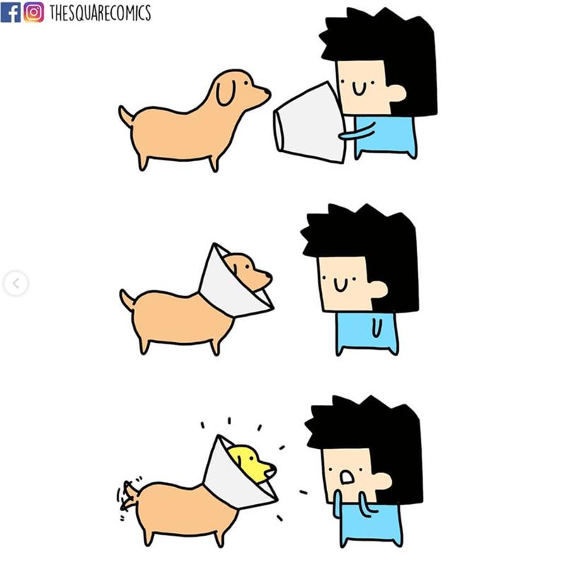 Cartoon - THESQUARECOMICS