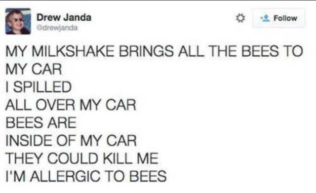 Text - Drew Janda drewjanda Follow MY MILKSHAKE BRINGS ALL THE BEES TO MY CAR I SPILLED ALL OVER MY CAR BEES ARE INSIDE OF MY CAR THEY COULD KILL ME I'M ALLERGIC TO BEES
