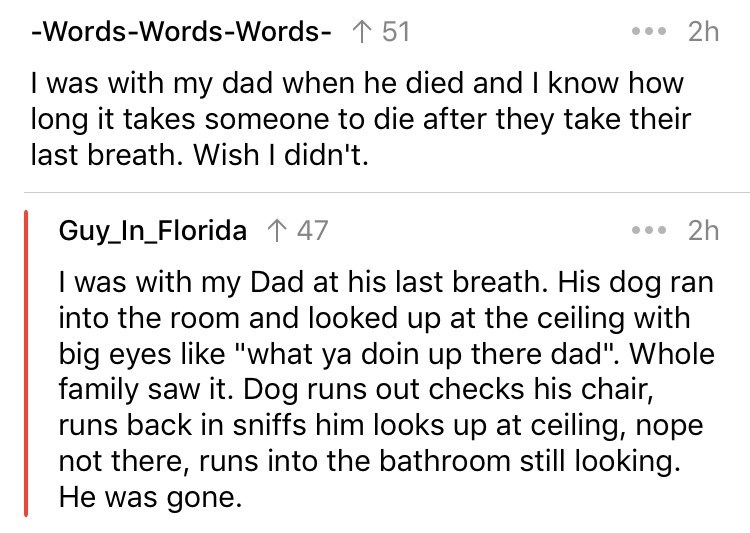 """cringe fact - Text - -Words-Words-Words- 151 2h I was with my dad when he died and I know how long it takes someone to die after they take their last breath. Wish I didn't. 2h Guy_In_Florida 1 47 I was with my Dad at his last breath. His dog ran into the room and looked up at the ceiling with big eyes like """"what ya doin up there dad"""". Whole family saw it. Dog runs out checks his chair, runs back in sniffs him looks up at ceiling, nope not there, runs into the bathroom still looking. He was gone."""
