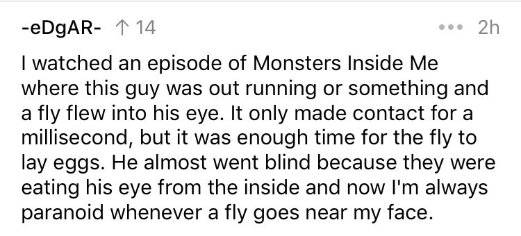 cringe fact - Text - 2h -eDgAR- 14 I watched an episode of Monsters Inside Me where this guy was out running or something and a fly flew into his eye. It only made contact for a millisecond, but it was enough time for the fly to lay eggs. He almost went blind because they were eating his eye from the inside and now I'm always paranoid whenever a fly goes near my face.