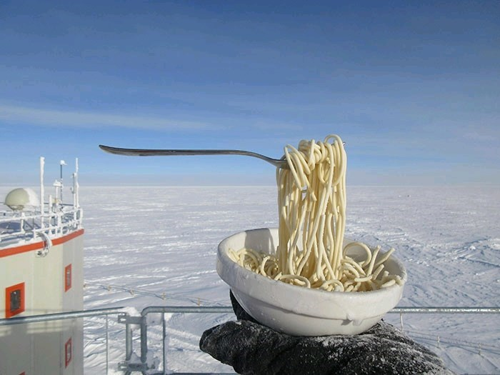 pic of a bowl of noodles and a fork that is defying gravity