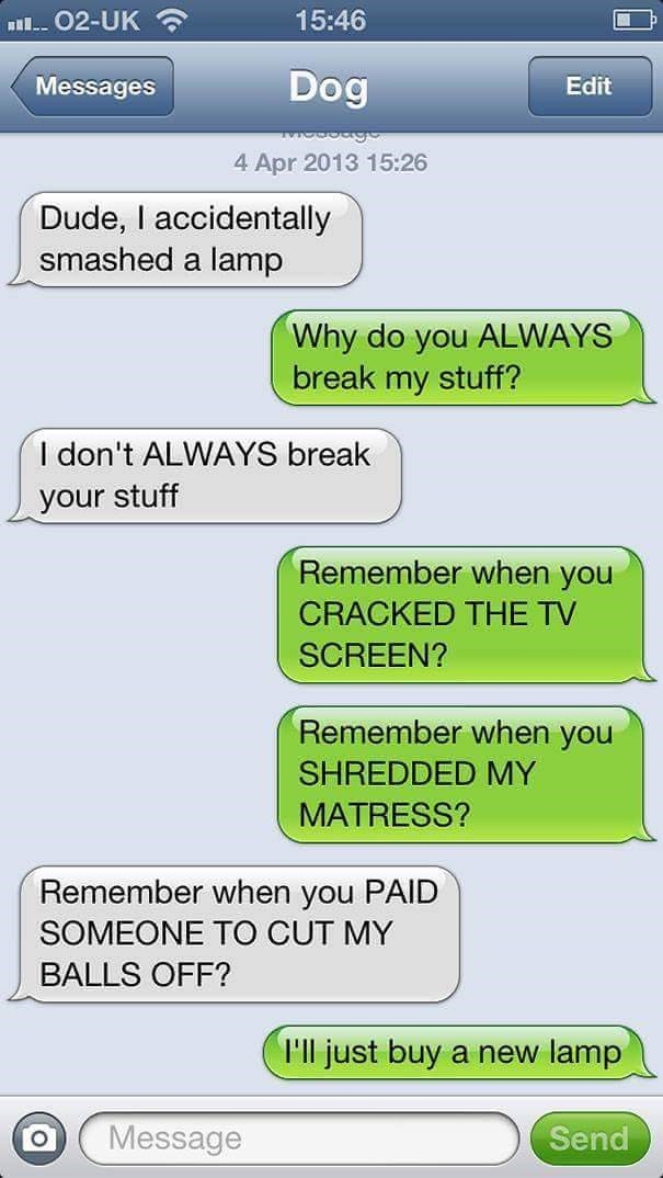 Text conversation between dog and human where the dog says that he knocked over a lamp and the human gets mad