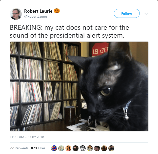 Black cat - Robert Laurie Follow @RobertLaurie BREAKING: my cat does not care for the sound of the presidential alert system. 19 YZE 11:21 AM -3 Oct 2018 77 Retweets 873 Likes