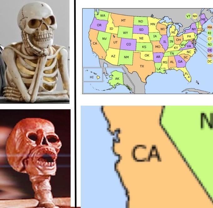 skeleton meme - Head - WA VT NH ME MT ND MN OR MA ID WI NY SD MI WY RI IA PA NE NV CT IL IN OH w UT CA Co NJ VA KY KS MO DE NC TN OK MD AZ AR NM SC DC GA MS AL TX HID AK CA