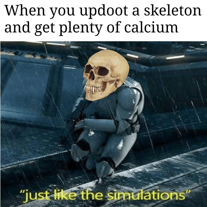"""skeleton meme - Photo caption - When you updoot a skeleton and get plenty of calcium """"just like the simulations"""