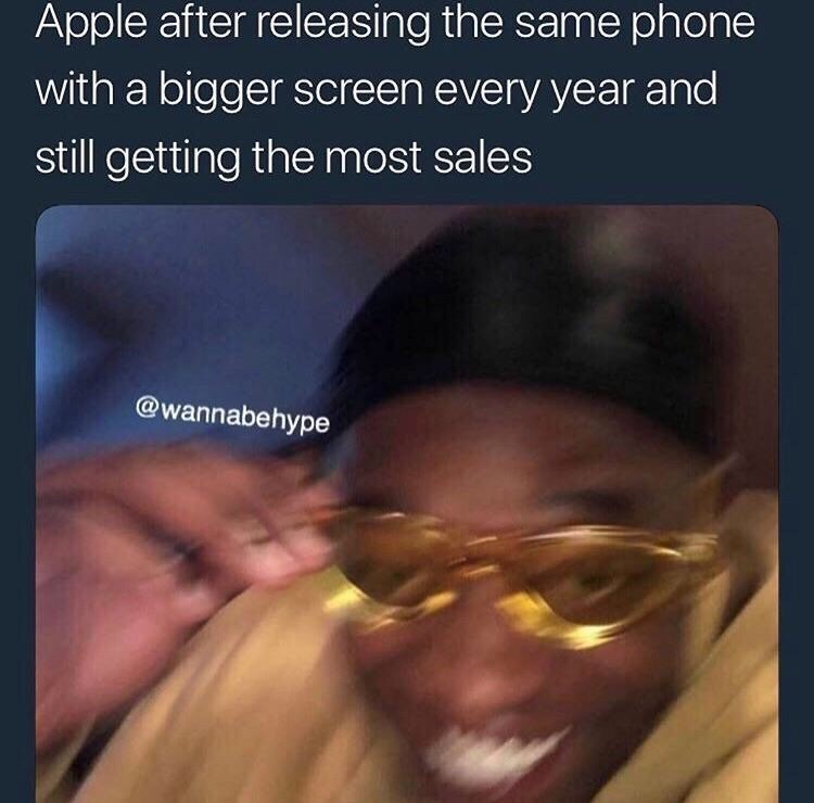 meme - Text - Apple after releasing the same phone with a bigger screen every year and still getting the most sales @wannabehype