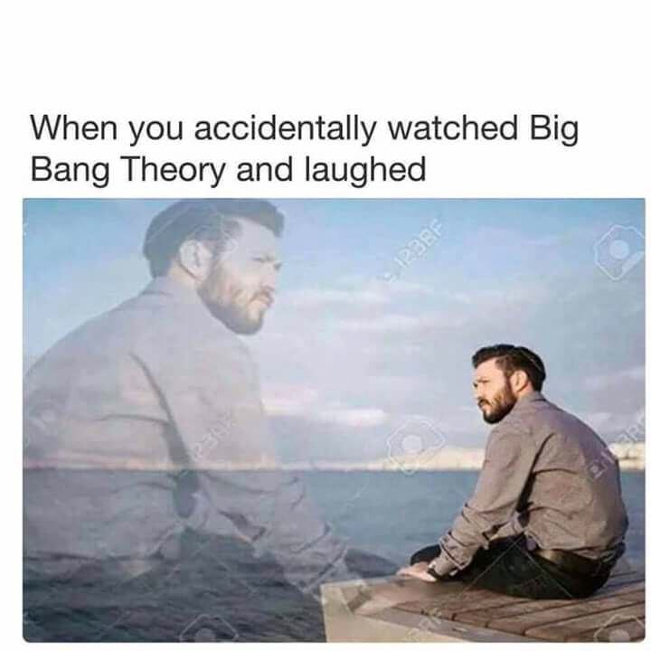meme - Text - When you accidentally watched Big Bang Theory and laughed 2398 12BRF