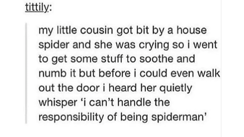 Text - tittily: my little cousin got bit by a house spider and she was crying so i went to get some stuff to soothe and numb it but before i could even walk out the door i heard her quietly whisper 'i can't handle the responsibility of being spiderman'