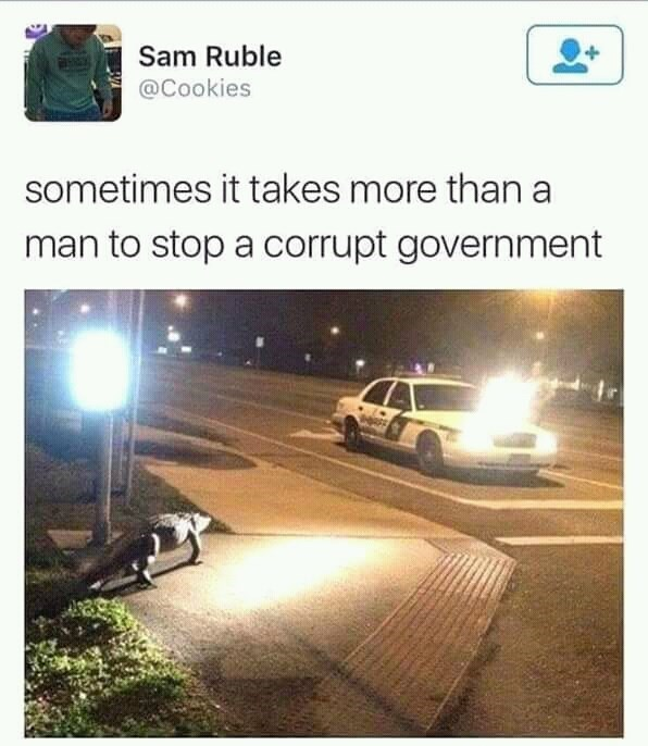 meme - Motor vehicle - Sam Ruble @Cookies sometimes it takes more than a man to stop a corrupt government
