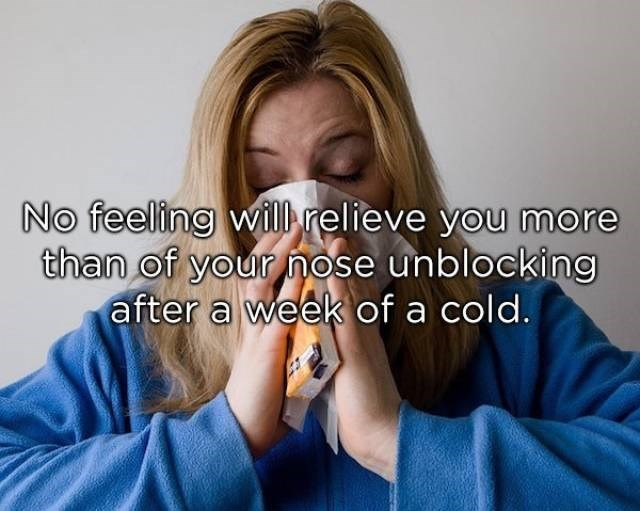 Facial expression - No feeling will relieve you more than of your nose unblocking after a week of a cold.