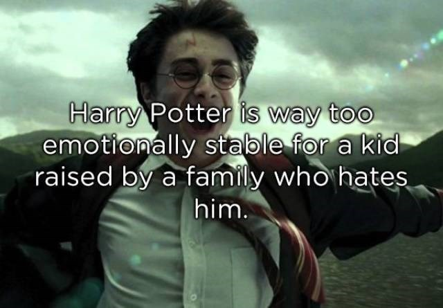 Text - Harry Potter is way too emotionally stable for a kid raised by a family who hates him.