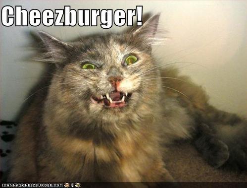 Cheezburger Image 922315520