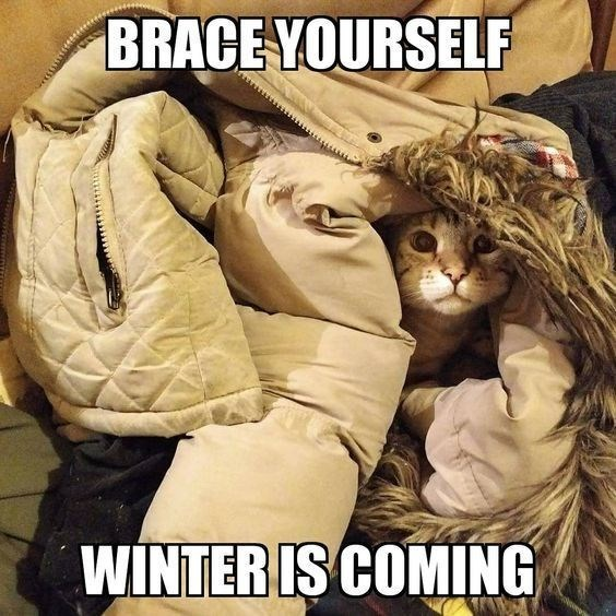 Photo caption - BRACE YOURSELF WINTER IS COMING