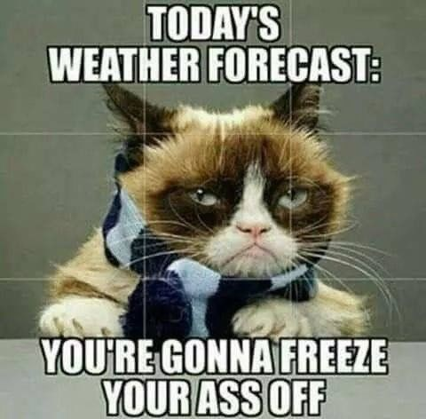 Photo caption - TODAY'S WEATHER FORECAST: YOURE GONNAFREEZE YOUR ASS OFF
