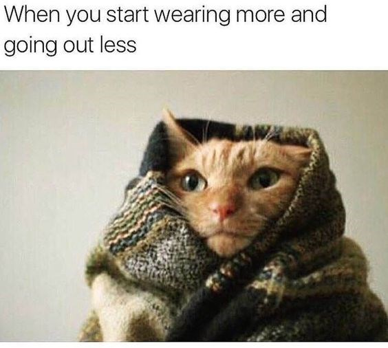 Cat - When you start wearing more and going out less