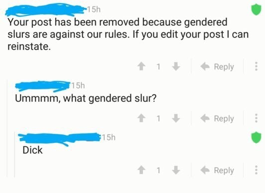 cringe - Text - 15h Your post has been removed because gendered slurs are against our rules. If you edit your post I can reinstate. Reply 15h Ummmm, what gendered slur? t1 Reply 15h Dick t1 Reply