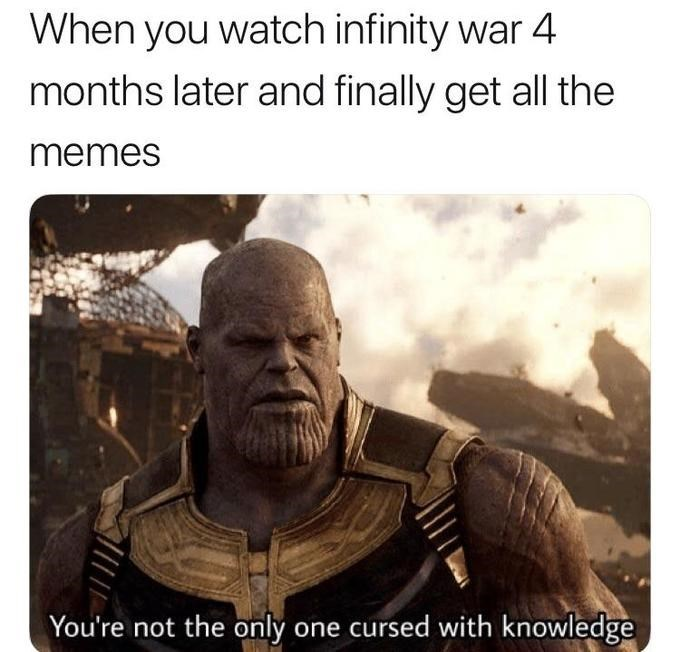 thanos meme - Human - When you watch infinity war 4 months later and finally get all the memes You're not the only one cursed with knowledge