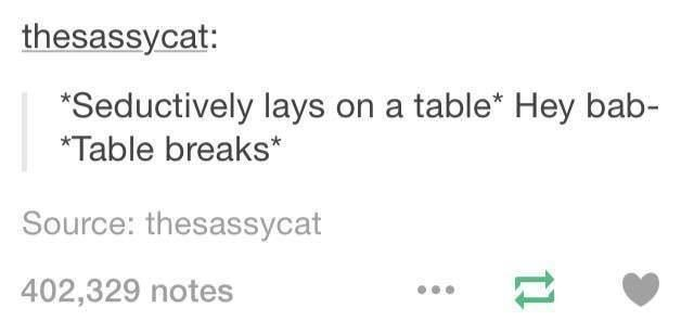 Text - thesassycat: Seductively lays on a table* Hey bab- *Table breaks Source: thesassycat 402,329 notes