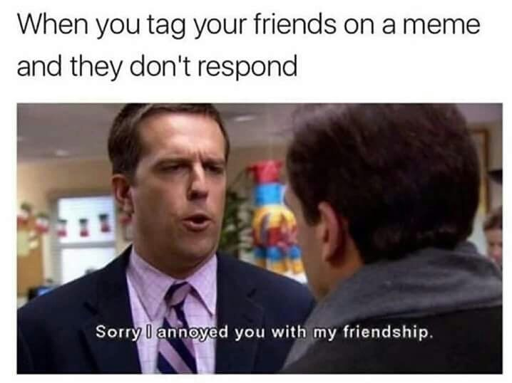 Text - When you tag your friends ona meme and they don't respond Sorry l annoyed you with my friendship.