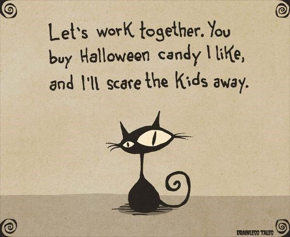 Black cat - Let's work together. You buy Halloween candy I like, and l'll scare the Kids away.