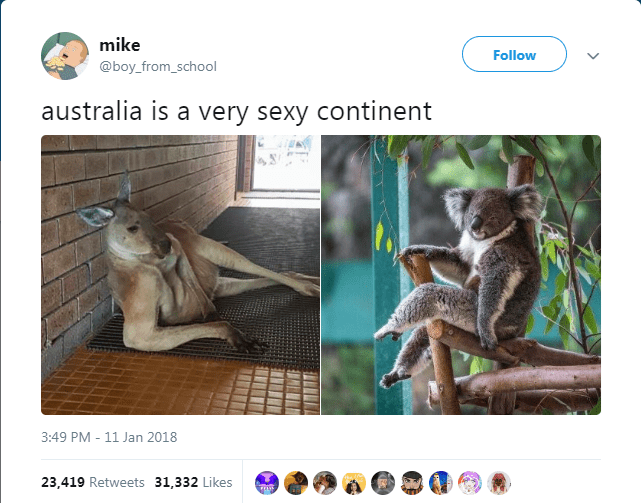 Wildlife - mike Follow @boy_from_school australia is a very sexy continent 3:49 PM - 11 Jan 2018 23,419 Retweets 31,332 Likes