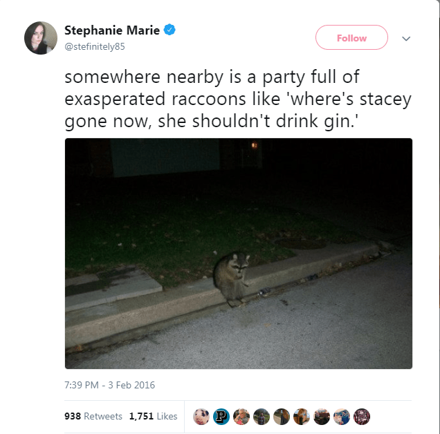 Text - Stephanie Marie Follow @stefinitely85 somewhere nearby is a party full of exasperated raccoons like 'where's stacey gone now, she shouldn't drink gin.' 7:39 PM -3 Feb 2016 938 Retweets 1,751 Likes