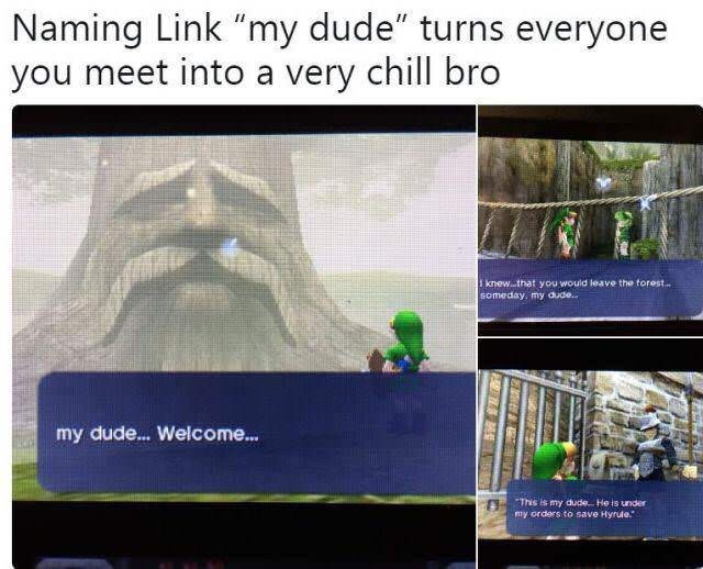 "Caption that reads, ""Naming Link 'My Dude' turns everyone you meet into a very chill bro"" above stills of different characters from the game calling Link 'My Dude'"