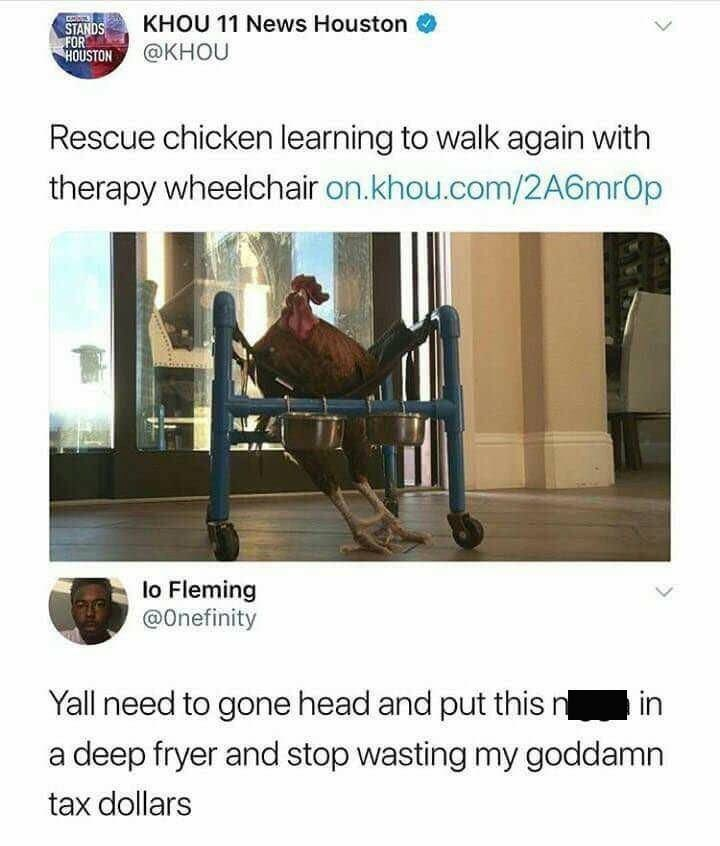 news tweet about chicken getting a wheelchair and reply asking to stop wasting tax money