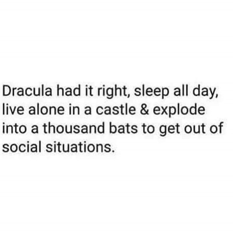 random meme about Dracula having the right idea on how to conduct life
