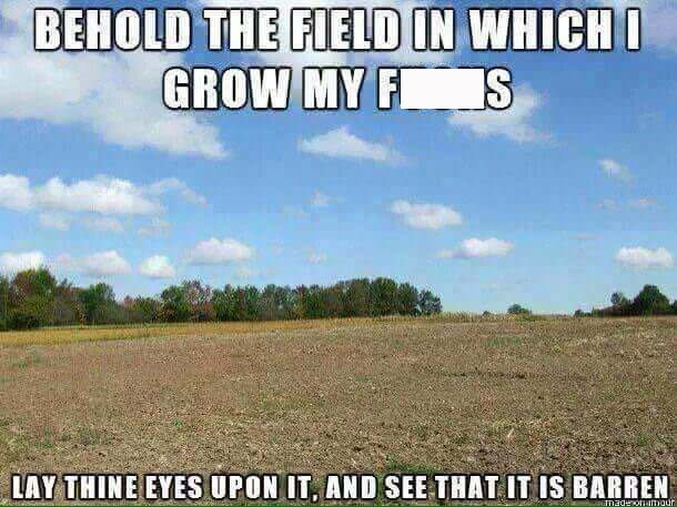 random meme of barren field that symbolizes not caring and not giving a fuck
