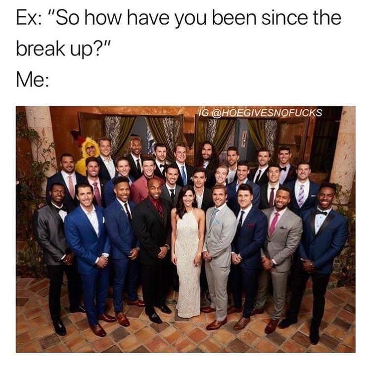 "Caption that reads, ""Ex: so how have you been since the breakup? Me: ..."" above a pic of the Bachelorette with all of her contestants"