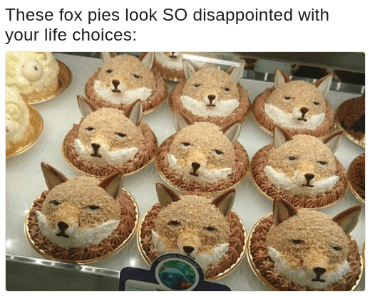 disappointed fox pies meme