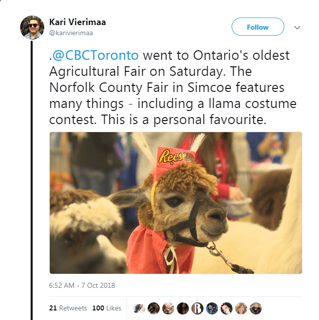 Text - Kari Vierimaa Follow @karivierimaa @CBCToronto went to Ontario's oldest Agricultural Fair on Saturday. The Norfolk County Fair in Simcoe features many things including a llama costume contest. This is a personal favourite. Rees 6:52 AM -7 Oct 2018 21 Retweets 100 Likes