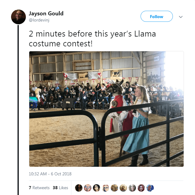 Text - Jayson Gould Follow @lordevinj 2 minutes before this year's Llama costume contest! 10:32 AM - 6 Oct 2018 7 Retweets 38 Likes