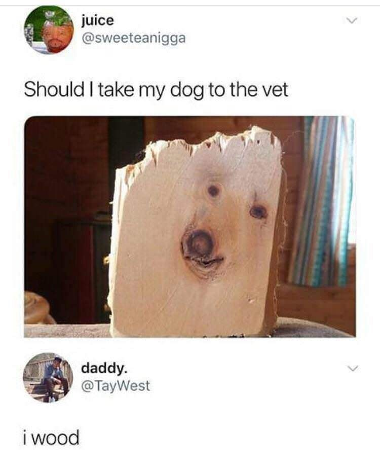 dog meme of a piece of wood that has a dogs face on it