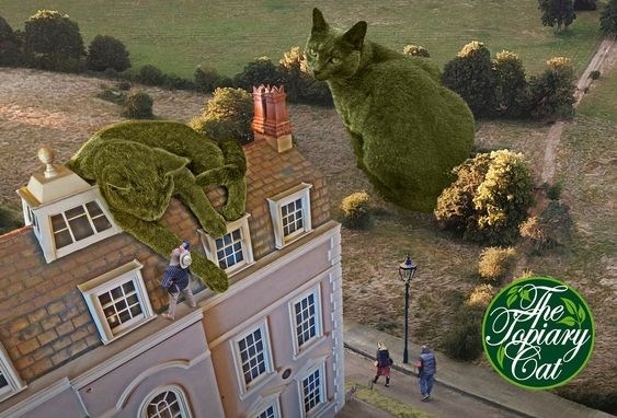 Topiary cat photos