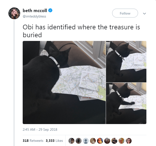 Product - beth mccoll Follow @imteddybless Obi has identified where the treasure is buried 2:45 AM 29 Sep 2018 318 Retweets 3,333 Likes