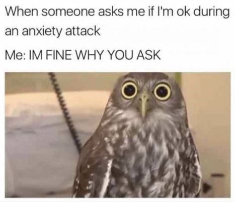 mental health meme - Owl - When someone asks me if I'm ok during an anxiety attack Me: IM FINE WHY YOU ASK