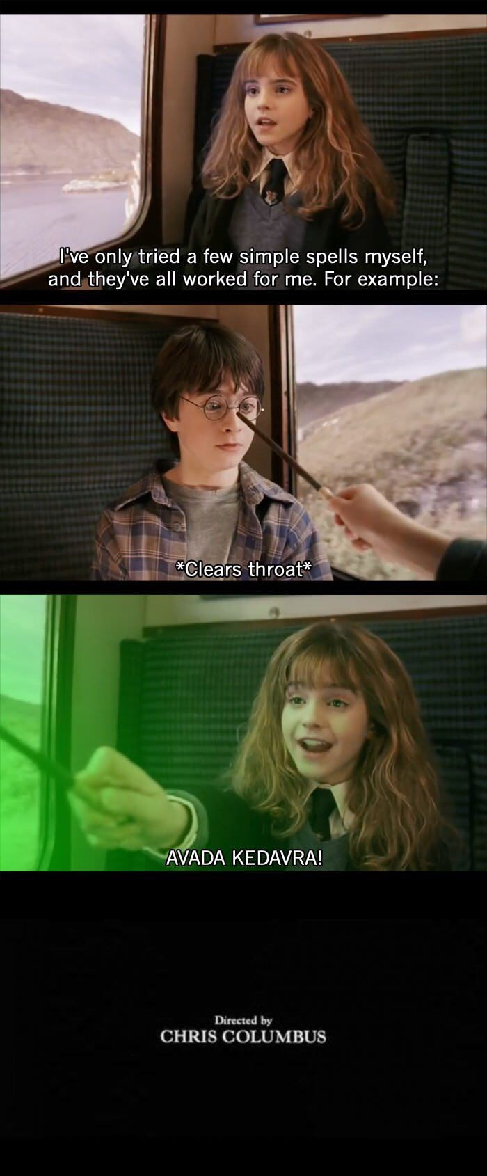 Harry Potter meme of Hermione killing Harry in the first movie and ending the franchise